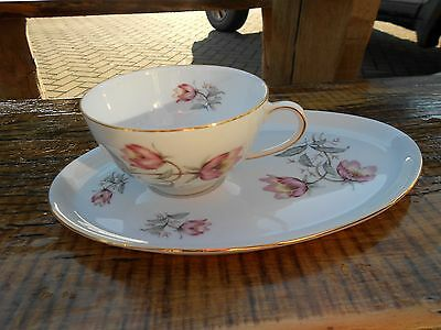 2 Vintage Thomas Germany Cups and Saucers/Plates