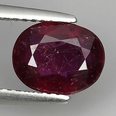 2.30 Ct Superior Piece Pigeon Red Natural Ruby Oval Cut Loose Gemstones