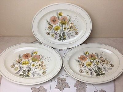 Vintage J&G Meakin Hedgerow 3 x Steak Plates / Platters Used Condition