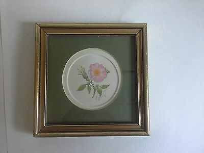 small gold framed flower print by Joanna Lant