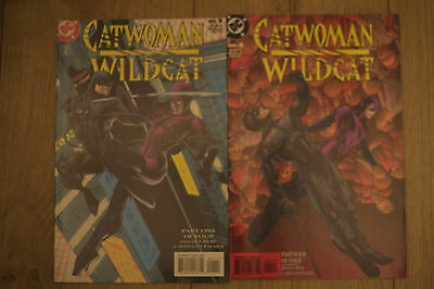 catwoman  and wildcat #1#4