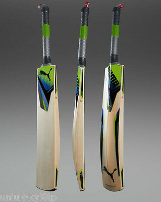 PUMA CHROMIUM PRO Cricket Bat Grade A English Willow ADULT HARROW Men's £250