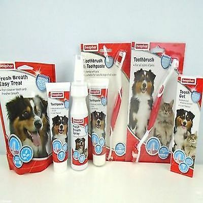 Dog Toothpaste Cat Puppy Beaphar  Dental Toothbrush Range Fresh Breath Treats