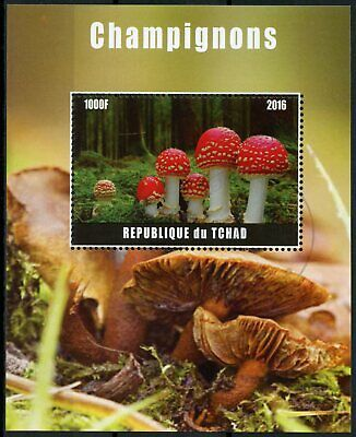 Chad 2016 CTO Mushrooms Fly Agaric 1v M/S Champignons Fungi Nature Stamps