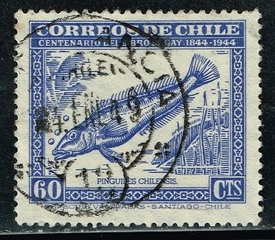 Chile Stamp Rpo Railway Cancellation Ambulancia # 13 Gay Serie