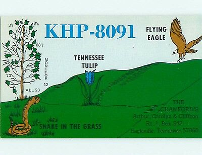 comic - QSL HAM RADIO CARD Eagleville Tennessee TN t0712