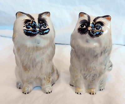 Hand Painted Ceramic Cat Salt and Pepper Pots / Cruet Set - BNIB
