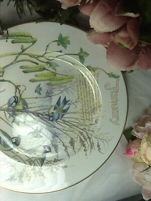 Caverswall Decorative Plate January, Excellent