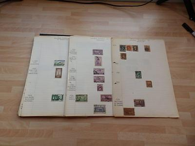 (3354) U.s.a Stamp Collection Early Onward On Pages