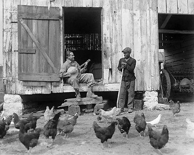 Bluesman Playing Banjo To Flock Of Chickens 16x20 Photographic Print