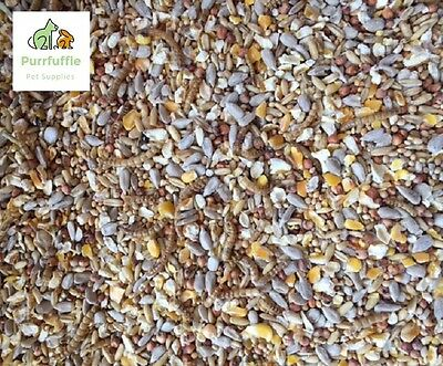 40KG ROBIN & WILD BIRD FOOD SEED MEALWORMS MIX ALL SEASONS BULK BUY 2x 20KG BAGS