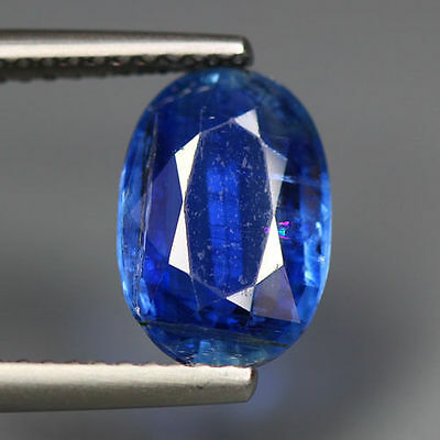 """2.95 Cts_Simmering Ultra Nice Color_100 % Natural Royal Blue Kyanite""""un-Heated"""""""