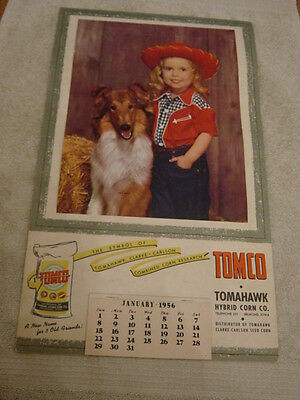Old Vintage 1956 Tomahawk Hybrid Corn / Seed / Collie Advertising Farm Calender