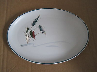"Denby Greenwheat Oval Plate 9.75"" x 7"""