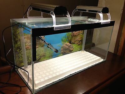 Fish Tank with Lights and Heater