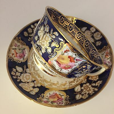 Rare And Stunning Coalport Cup And Saucer