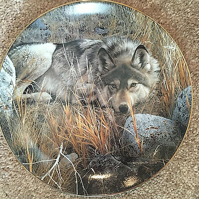 """Bradford Exchange - Plate -  Wolf Encounters """"One to One""""  First Issue w/ COA"""