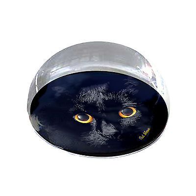 "Shadow Cat 2"" Crystal Half Moon Magnet and Paperweight"