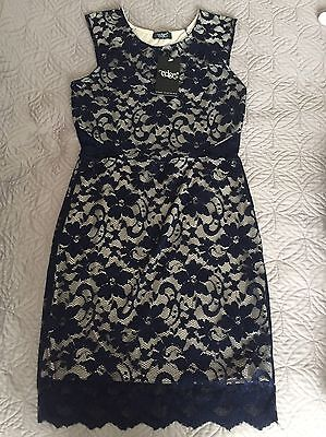 Navy Lace Dress Size 10 New With Tags