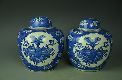 Gorgeous Pair Chinese Blue White Porcelain Pot