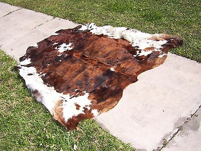 New Cowhide Rug TRICOLOR EXOTIC COW SKIN, Leather Area Rug, hair on hide, P0046