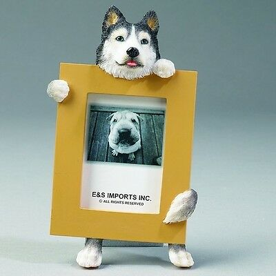 Siberian Husky Frame Dog Picture Photo Frame