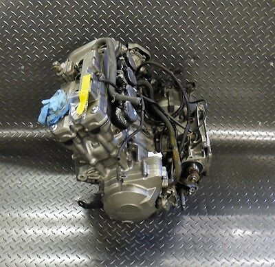 2004 Honda CB600F Hornet 600 Complete Engine - Running - Collection or Delivery