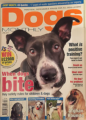 Dogs Monthly April 2014 Afghan Hound