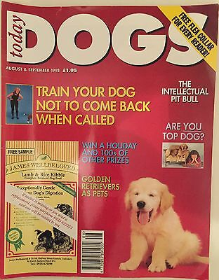 Dogs Today August/September 1993