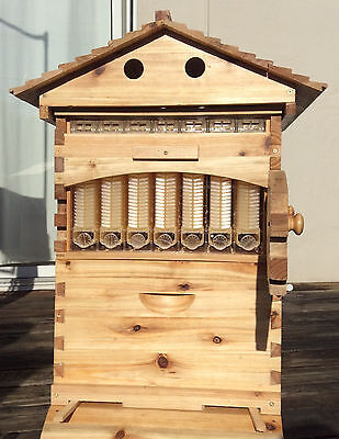 Wooden Beehive with 7 PCS High Efficiency Auto Flow Honey Beekeeping Frames
