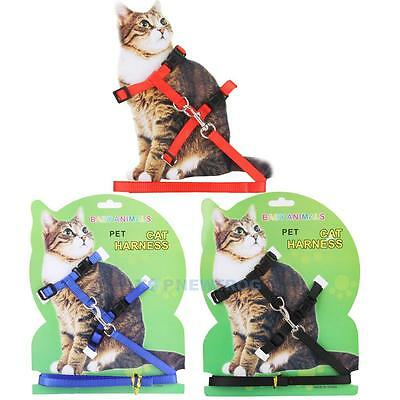 Cat Harness and lead Kitten/Walk/Run/Exercise/Play/Gift Strap Adjustable Collar