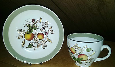 Alfred Meakin Hereford Tea Cup and Saucer