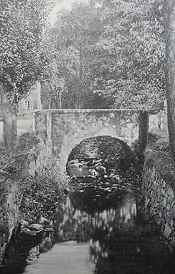 The Mill Stream Edwardian Post Card