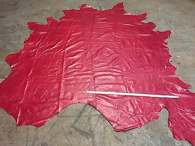 Red leather hide