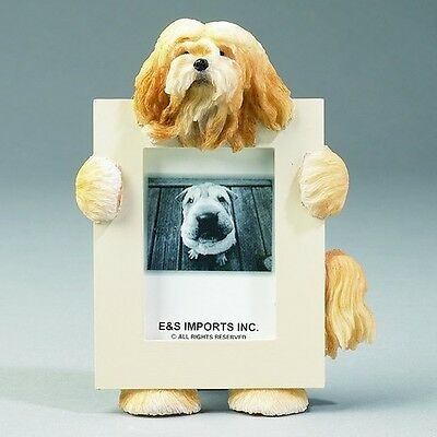 Lhasa Apso Dog Picture Photo Frame