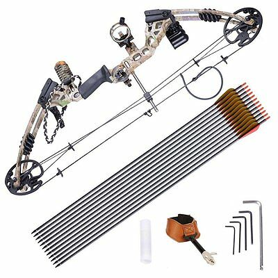 Bear Compound Bow & Arrow Set Archery Hunting Bow Dual Cam System 70lbs Draw