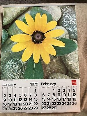 Vintage 1972 Coca Cola Advertising Wall Calendar