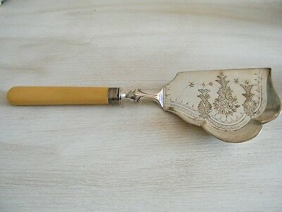 Antique Sterling Silver Crumb Scoop