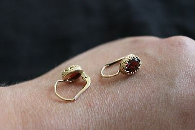 9ct Yellow Gold and Garnet Earrings
