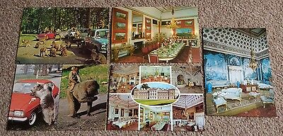 5 vintage postcards from Woburn Abbey and Safari Park 1980s