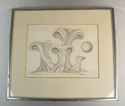 "Original Pencil Drawing~Surreal Abstract ""Plastisk Tormation"" Signed S. Inguar"