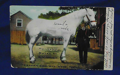 1904? 1908? Postmarked Postcard - Draft Horse Monarch A. W. Walkup Meedham Coal