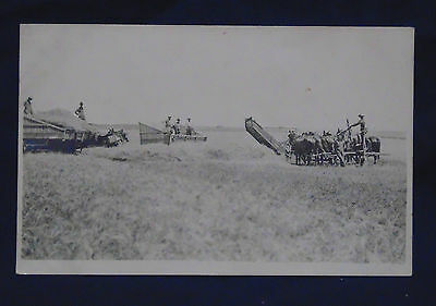 Early 1900's Velox Stamp Box Unposted Postcard - J.f. & E.m. Stulls Harvesting