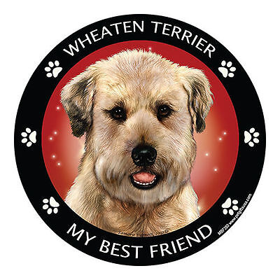 My Soft Coated Wheaten Terrier Is My Best Friend Dog Car Magnet
