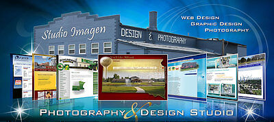 Online Store Sell Your Products CUSTOM website design Web site and Hosting