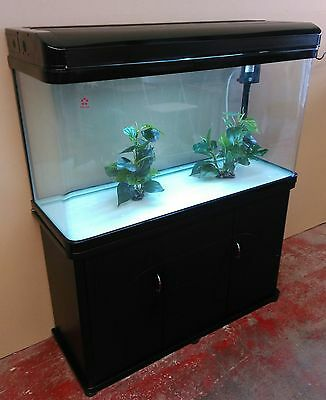 Curved Glass  3.5ft Fish Tank, Cabinet, hood, filter system Complete Set