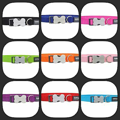 Red Dingo Plain Nylon Dog COLLAR - Choice of Colours and Sizes