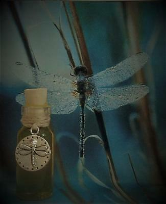 DRAGONFLY SUMMER Ritual Oil Potion Anointing Oil Litha~ Wicca Witchcraft Pagan