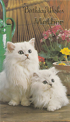 Happy Birthday Mother Vintage Cute White Kittens 1970s Greeting Card ~ Cat