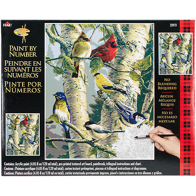 "Paint By Number Kit 16""X20"" Song Birds 22078"